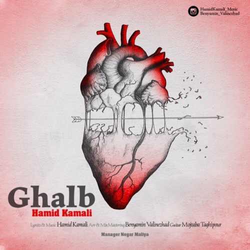 دانلود موزیک جدید حمید کمالی قلب