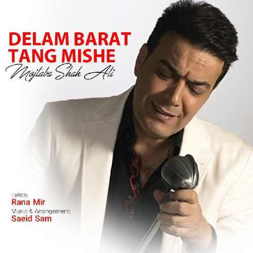 دانلود موزیک جدید مجتبی شاه علی دلم برات تنگ شده