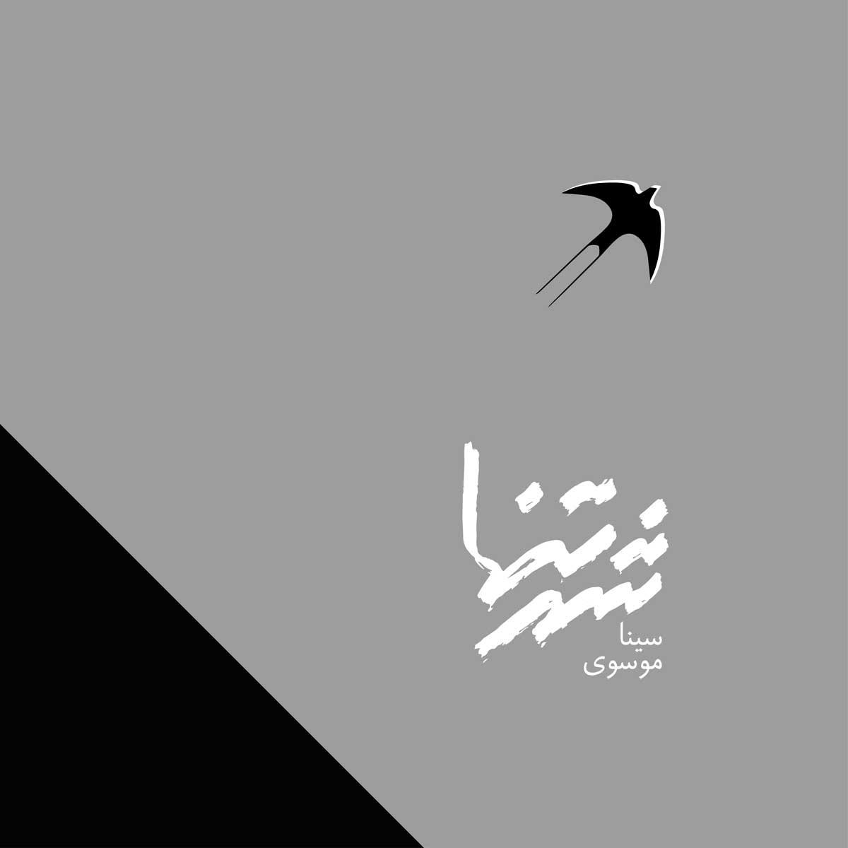 دانلود موزیک جدید سینا موسوی شهر تنها