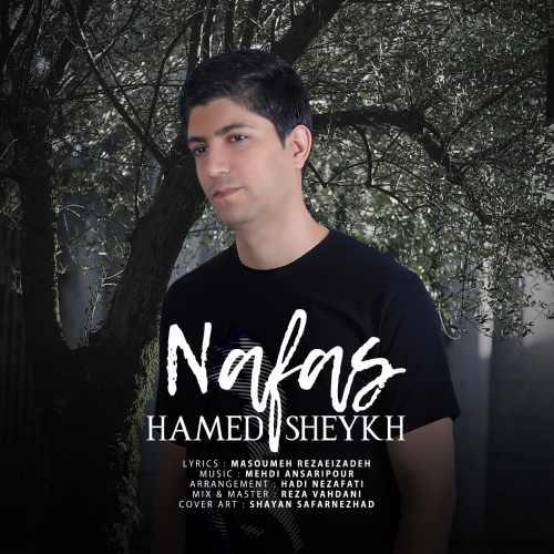 دانلود موزیک جدید حامد شیخ نفس
