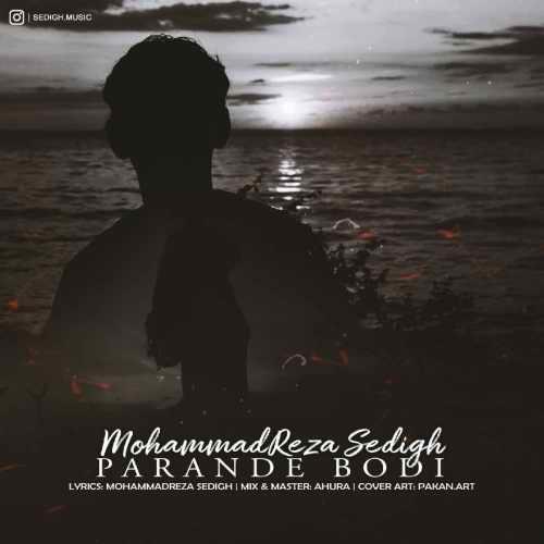 دانلود موزیک جدید محمدرضا صدیق پرنده بودی
